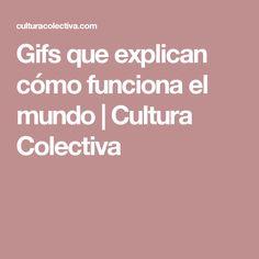Gifs que explican cómo funciona el mundo | Cultura Colectiva