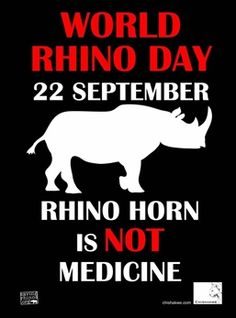Stop poaching our Rhino's! Extinction is forever!