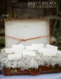 Love this suitcase full of baby's breath.. Such a cute idea for weddings.