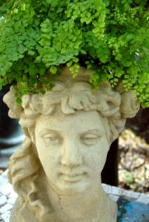 Google Image Result for http://www.the-art-of-landscape-design.com/image-files/planter_head_fern_concrete.jpg