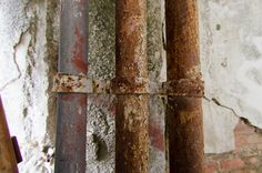 Fungal mold rusty dampness tubes