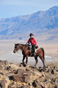 Endurance Riding: Minimizing Wear and Tear on Your Horse Endurance Horse Racing Horses Learn about www. All The Pretty Horses, Beautiful Horses, Horse Training, Endurance Training, Trail Riding Horses, Trick Riding, Horse Story, Western Riding, Horse Care