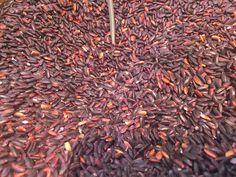 https://flic.kr/p/FrpTxT | Tipos de arroces | Tipos de arroces, grano, variedades, colores y aromas de todo el mundo. koketo.es