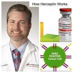 How Herceptin Treats HER2 Positive Cancers