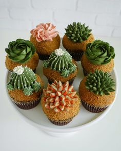 Two years ago Leslie Vigil decided to merge her love of succulents and baking, using buttercream to decorate cupcakes and multi-teared cakes with bountiful collections of aloe, cacti, Cupcakes Succulents, Edible Succulents, Cactus Cake, Plain Cake, Buttercream Cake, Cute Cakes, Cakes And More, Cake Art, How To Make Cake