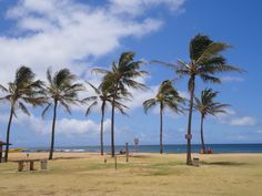 """Today I'll be starting a little virtual tour of Kauai in celebration of the upcoming release of my new McKenna Mystery """"Kauai Temptations."""" Let's begin on the south side at Salt Pond Park. If you've never been there, it's located right near Kauai's """"biggest little town"""" Hanapepe."""