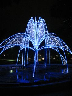 Oh Dear! I love Blue Lights! Niagra Falls, Canada