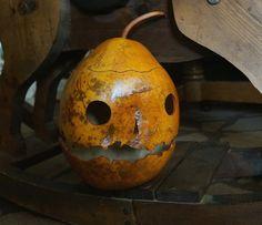 Pumpkin Jack o' Lantern Gourd Halloween Spooky Harvest Fall Autumn Rustic Natural Folk Primitive All Souls' Day