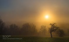 by rajeeshiva. Please Like http://fb.me/go4photos and Follow @go4fotos Thank You. :-)