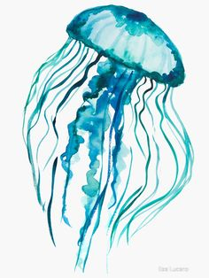 Watercolor Jellyfish Sticker by Ilze Lucero Aquarell-Quallen Aufkleber von Jellyfish Drawing, Watercolor Jellyfish, Jellyfish Painting, Jellyfish Tattoo, Jellyfish Quotes, Pet Jellyfish, Jellyfish Sting, Jellyfish Light, Jelly Fish Watercolor