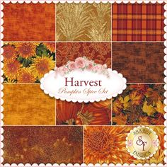 Harvest 11 FQ Set - Pumpkin Spice Set for Timeless Treasures: Harvest is an Autumn collection with hints of metallic gold accents from Timeless Treasures Fabrics. 100% Cotton. This set contains 11 fat quarters, each measuring approximately 18