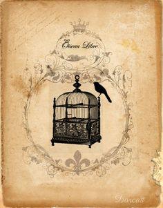 ephemera #paperie #printables #shabbychic #vintage #birdcage