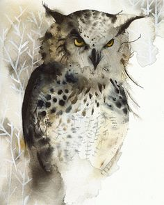 "Watercolor - ""Great Horned Owl"" by Amber Alexander"