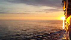 Oasis of The Seas.Alba nel Mediterraneo