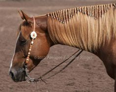 Lovely braiding technique. Nice for reined cow or trail ride.