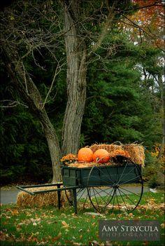 Sweet Autumn...cart with pumpkins & hay bales.