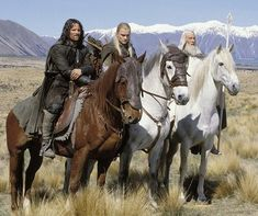 Love this pic - Gandalf on Shadowfax, Legolas on Arod and Aragorn on Brego. From LOTR~movie star horses!