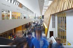 Gallery of Duchess Park Secondary School / HCMA - 2