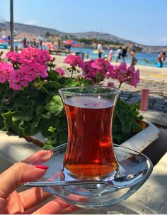 Red Tea Benefits, Arabic Tea, Healthier Together, Turkish Tea, Tea Glasses, Detox Recipes, Sweet Tea, Detox Tea, Detox Drinks