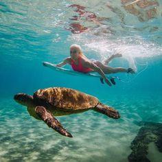 Surfing holidays is a surfing vlog with instructional surf videos, fails and big waves Girl Under Water, Under The Sea, Playa Beach, Ocean Beach, Surf Girls, Beach Girls, Tatiana Weston Webb, Real Life Mermaids, Surf Hair