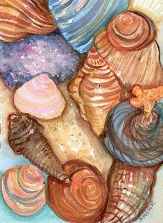 Original Shells Watercolor Seashells Painting by SharonFosterArt, $16.00