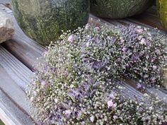 Kranz aus rosa Schleierkraut & Limonium....