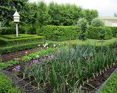 Brabourne Farm: Garden