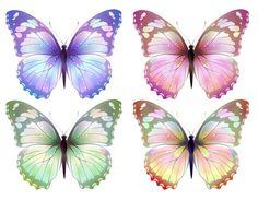 "Photo from album ""Бабочки"" on Yandex. Butterfly Clip Art, Butterfly Drawing, Butterfly Pictures, Butterfly Painting, Butterfly Crafts, Butterfly Kisses, Butterfly Wallpaper, Butterfly Design, Butterfly Wings"