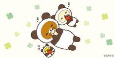 今日もパンダごっこ♪まくまく♪ #パンダでごろん