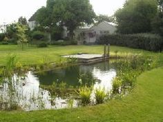 natural eco friendly swimming pond