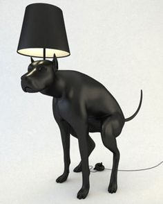 Hilarious at best but this isn't exactly what you would call the best housewarming gift ever—HILARIOUS 'POOPING DOG' LAMP.