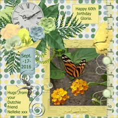 Hope your doing fine Gloria , here my page for you.xxx  Gloria - September 17, 1956 Sept. 2016 - Happy 60th birthday Gloria made with Charisma_Dreamn4everDesigns , thanks Pauline Hope it will be a great birthday. 60 is a great age , enjoy this special day , I will have this special one next year in March ... hugs by your friend Dutchie/Nelleke pict. free to use from my friend Sake Visser about a loving butterfly ,  thanks Sake. shadowed and recolored a bit font- Tahoma