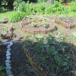Huertas circulares en Findhorn - Escocia