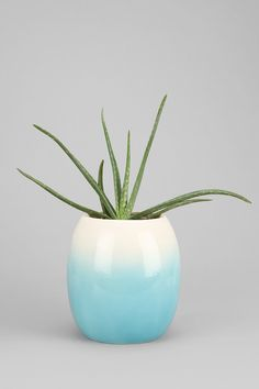 Plum & Bow Large Fade Out Vase - Urban Outfitters. cool.