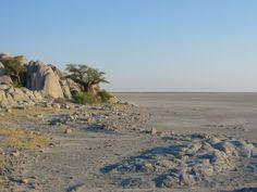 Crossing the great Maghadigadi Pans + Kubu Island - Botswana. Picture by Daisy van Groningen.