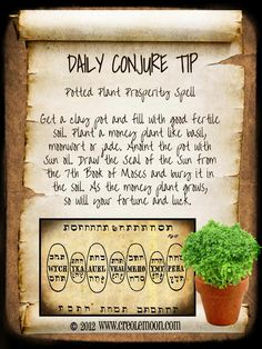 Daily Conjure Tip: Potted Plant Prosperity Spell brought to you courtesy of Creole Moon Publications www.creolemoon.com