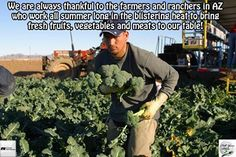 We are always thankful to the farmers and ranchers in AZ who work all summer long in the blistering heat to bring fresh fruits, vegetables and meats to our table! ‪#‎ThankAFarmerThursday‬ ‪#‎AZ‬