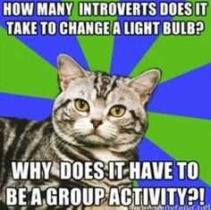 insecure about your introversion discover introvert cat; proud of your introversion - Introvert Cat Anxiety Cat, Social Anxiety, Anxiety Girl, Anxiety Humor, Anxiety Disorder, Quotes Thoughts, Life Quotes Love, Dark Thoughts, Feelings