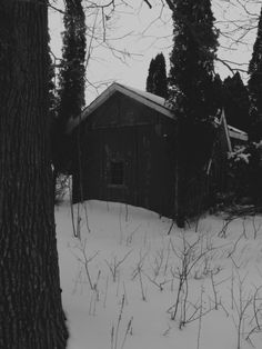 (There was snow halfway up to his knees the day his mother died. He used all the dry firewood to burn her body and nearly let the cold take him too afterward.)