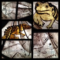 Animals from the stained glass at @thecct's All Souls Bolton. High up in the east window