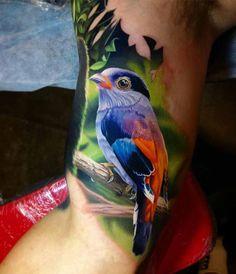 bird tattoo silver-breasted broadbill
