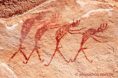 Pinturas representando grupo de homens, possivelmente em ato ritual. Serra da Capivara (PI).