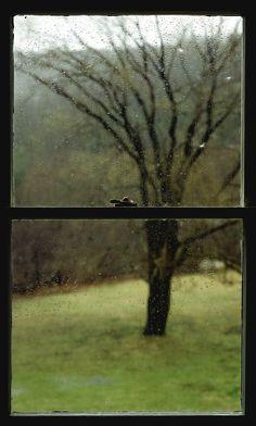 Rain Window V, 1989, C-Print, 65 x 40 Inches