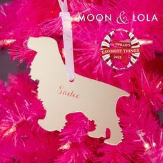 Moon and Lola Personalized Pet Ornament   Oprah's Favorite Things 2015
