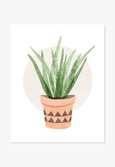 Original illustration of a cactus plant in fresh spring green color gives this artwork a free spirited feel. We've seen it in nurseries, bedrooms, family rooms and workspaces. And it makes an adorable housewarming gift. One in a series of Cute Cacti Also available: Canvas Print: Tall Succulent - Archival full-color print on white matte cover paper - Sizes: 5x7 inches to 24x36 inches - Shipping: Smaller sizes ship flat; 11x14 and larger sizes ship in a tube - Made in USA