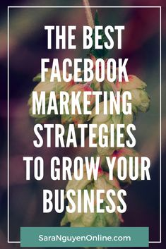 Learn how to use Facebook to actually generate leads and sales for your business. #facebook #facebookmarketing #socialmedia #entrepreneur