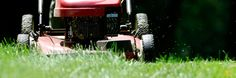 Lawn Care | UGA Cooperative Extension
