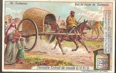 Turkistan Horse Drawn Wagon Taschkent Russia c1907 Card