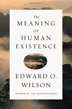 The Meaning of Human Existence by Edward O. Wilson http://www.amazon.com/dp/0871401002/ref=cm_sw_r_pi_dp_QnTGub1088YGY