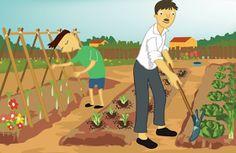 como construir un huerto familiar para nuestra casa